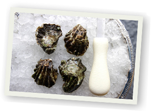 oyster-america-west
