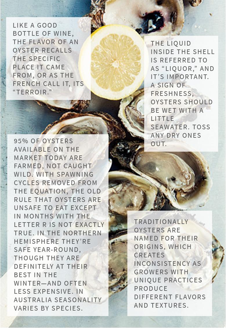 oyster-ettiquite