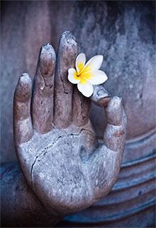 lotus-hand