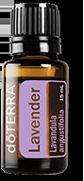 oil-lavender