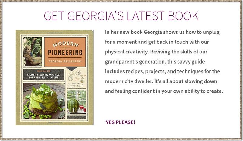 georgia-book-callout